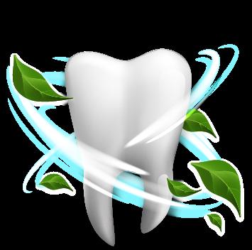 diente-fresh_Mesa de trabajo 1 copia 3